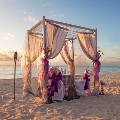 Honeymoon setting